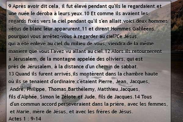 Actes 1. 9-14.jpg