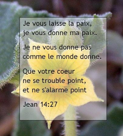 Jean 14.27.jpg