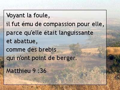 Matthieu 9 .36.jpg
