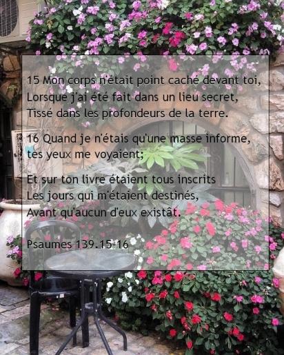 Psaumes 139.15-16.jpg