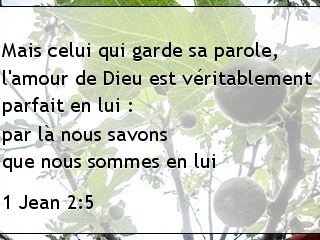 1 Jean 2.5