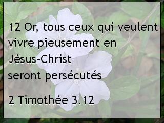 2 Timothée 3.12.jpg