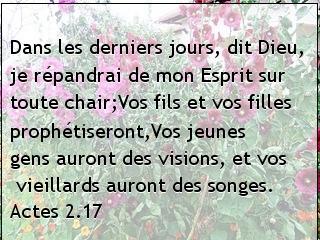 Actes 2.17.jpg