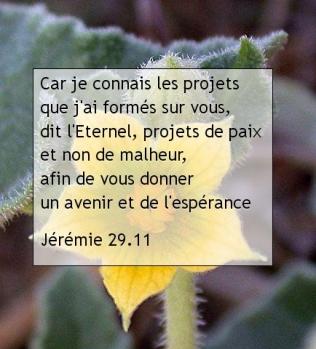 Jérémie 29.11