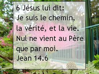 Jean 14.6.jpg