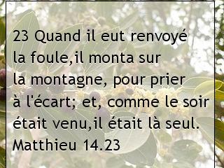 Matthieu 14.23.jpg