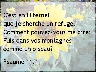 Psaume 11.1.jpg