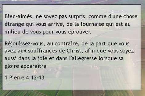 1 Pierre 4.12-13.jpg