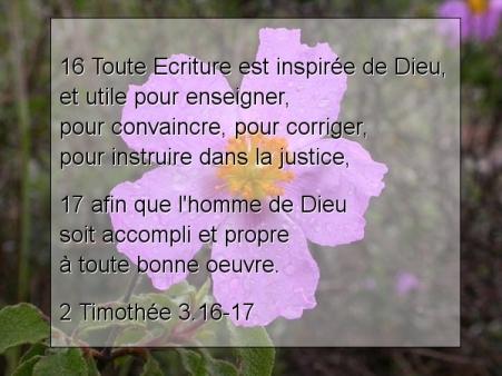 2 Timothée 3.16-17..jpg