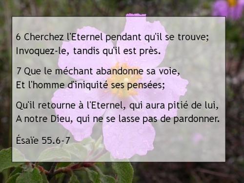 Ésaïe 55.6-7.jpg