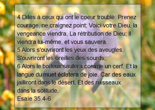 Esaïe 35.4-6.jpg