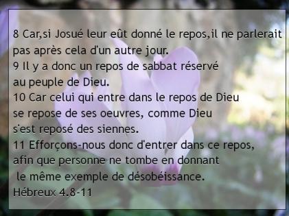 Hébreux 4.8-11