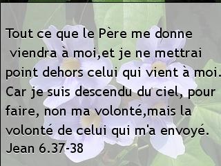 Jean 6.37-38.jpg