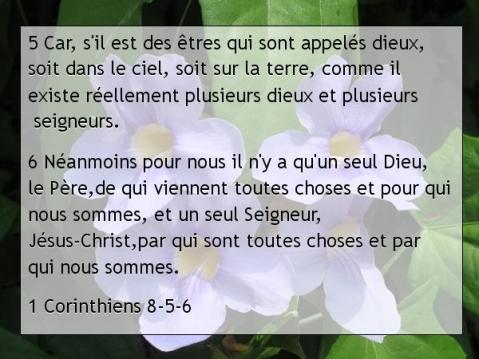 1 Corinthiens 8-5-6 ..jpg