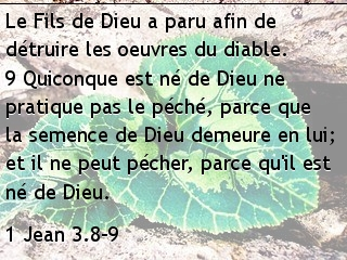 1 Jean 3.8-9.jpg