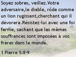1 Pierre 5.8-9