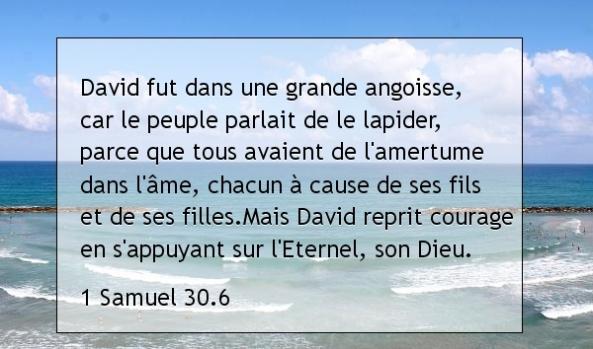 1 Samuel 30.6.jpg