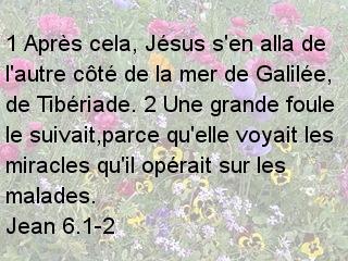 Jean 6.1-2.jpg