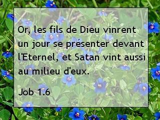 Job 1.6.jpg