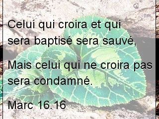 Marc 16.16