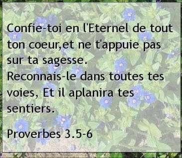 Proverbes 3.5-6.jpg