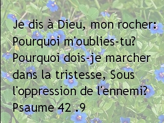 Psaume 42 .9.jpg