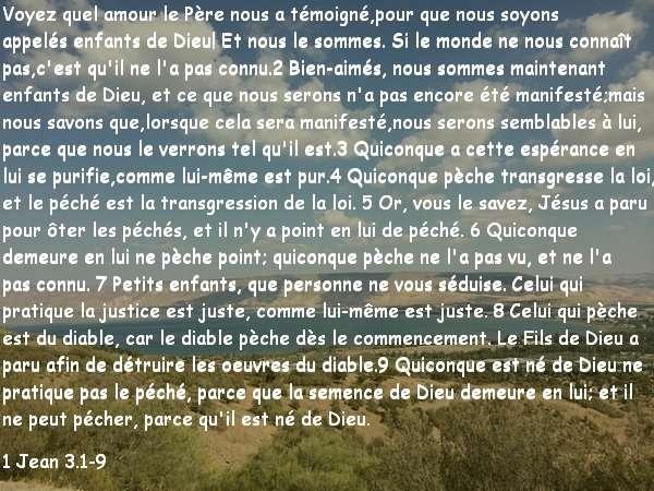 1 Jean 3.1-9