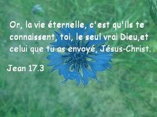 Jean 17.3