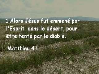 Matthieu 4.1.jpg