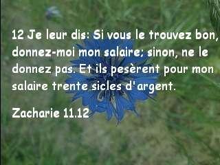 Zacharie 11.12