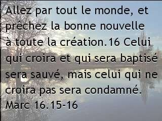 Marc 16.15-16