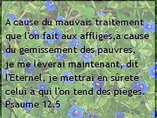 Psaume 12.5