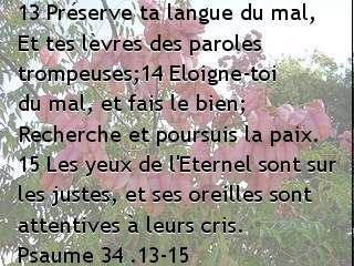 Psaume 34 .13-15.jpg