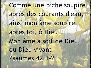 Psaumes 42.1-2....jpg