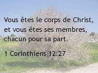 1 Corinthiens 12.27.jpg