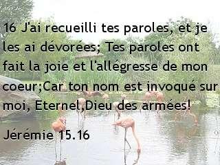Jérémie 15.16