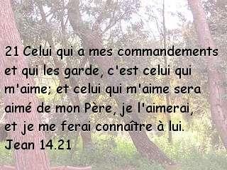 Jean 14.21.jpg