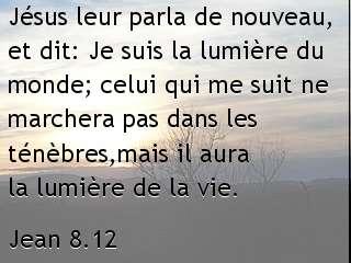 Jean 8.12.jpg