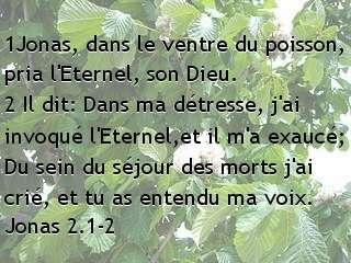 Jonas 2.1-2