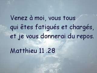 Matthieu 11 .28