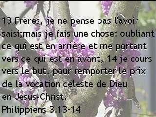 Philippiens 3.13-14