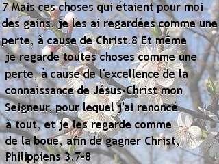 Philippiens 3.7-8