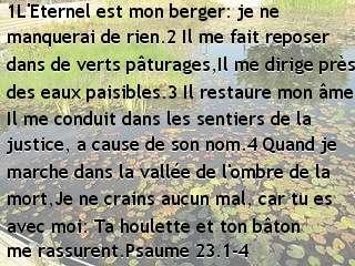 Psaume 23.1-4
