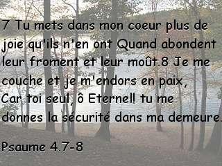 Psaume 4.7-8