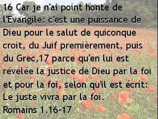 Romains 1.16-17.