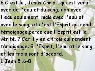 1 Jean 5 .6-8.jpg