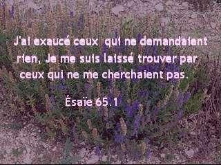 Ésaïe 65.1