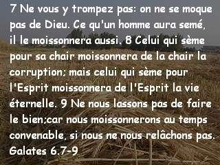Galates 6.7-9.jpg