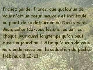 Hébreux 3.12-13