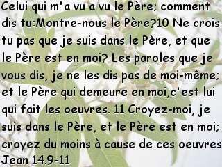 Jean 14.9-11